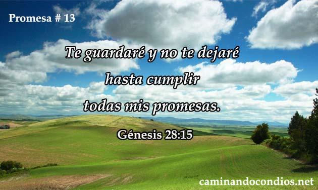 promesa-13