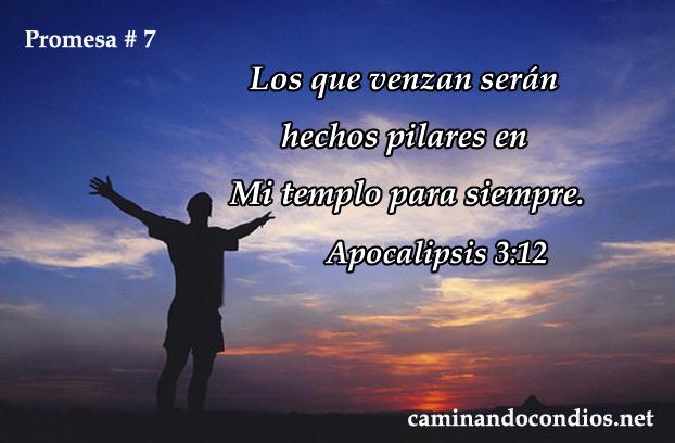 promesa-7