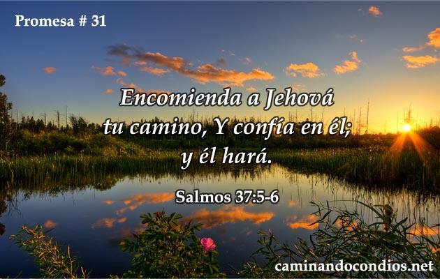 promesa-31