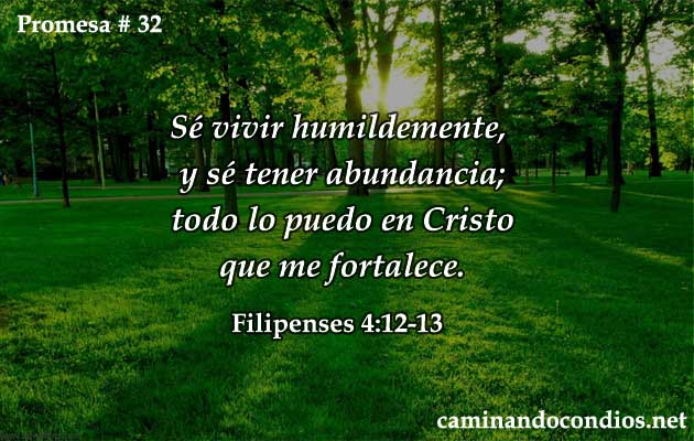 promesa-32
