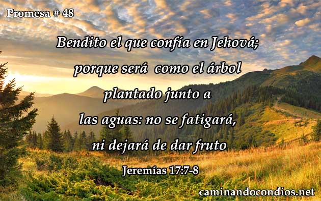 promesa-48-48