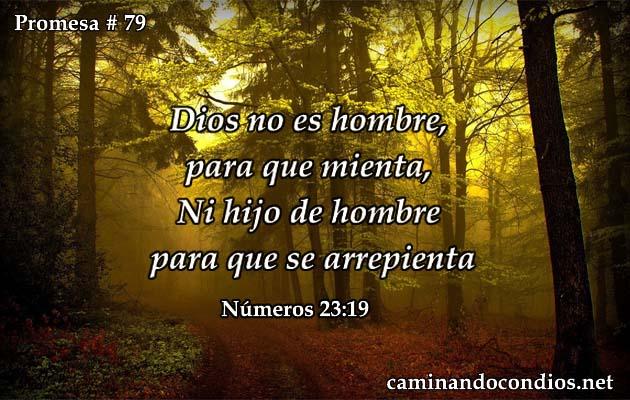 promesa79
