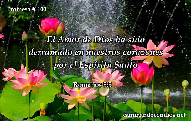 romanos 5:5