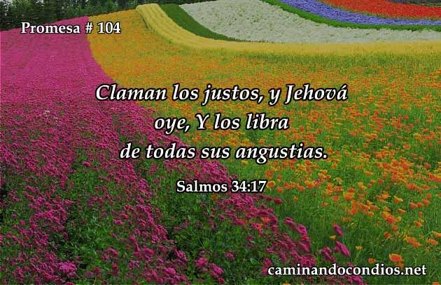 Salmos 34:17