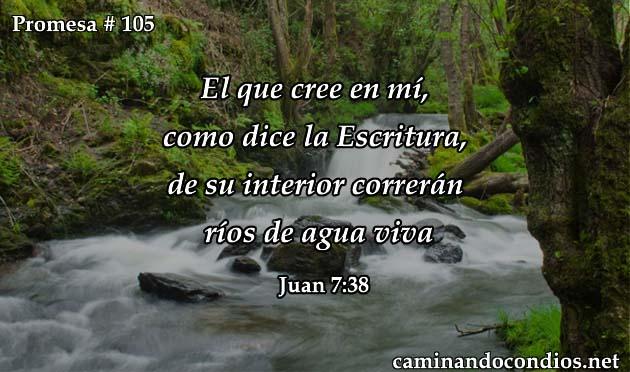 Juan 7:38