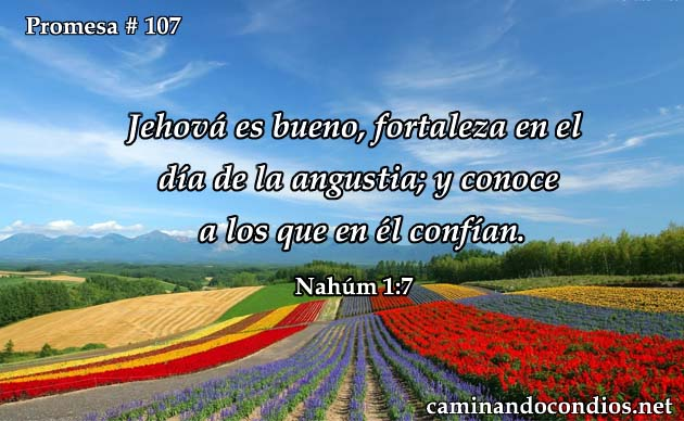 Nahúm 1:7