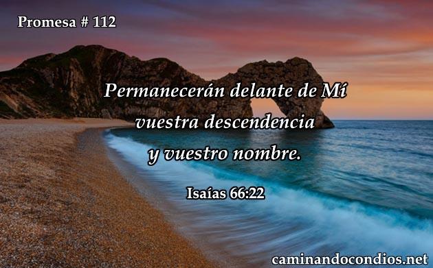 isaias 66:22