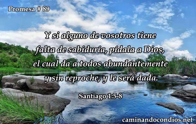Santiago 1:5-8