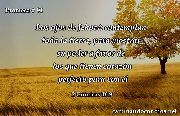 2 crónicas 16:9