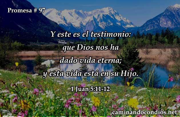 1 juan (5:11-12)
