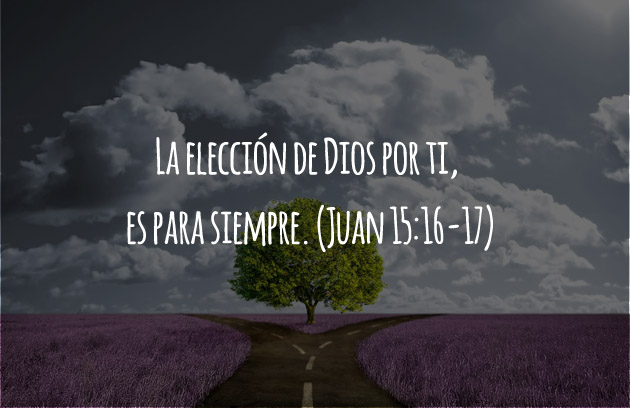 Juan 15:16-17