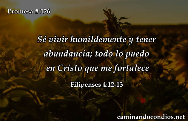 Filipenses 4:12-13