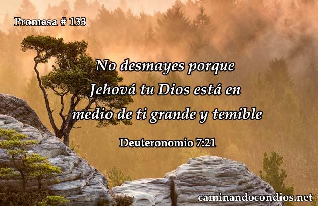 Deuteronomio 7:21