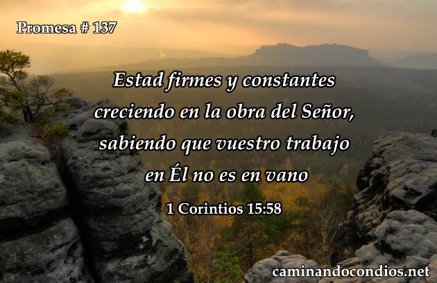 1 Corintios 15:58