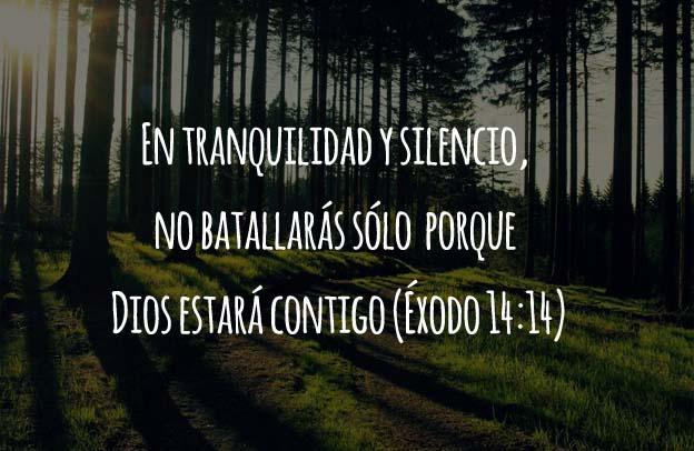 exodo14:14
