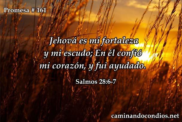 Salmos 28:6-7