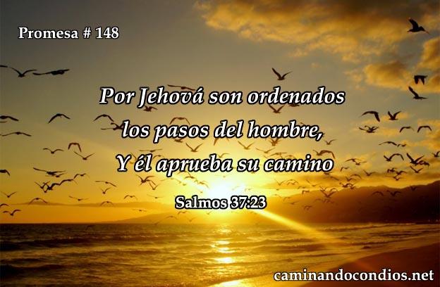 salmos 37:23