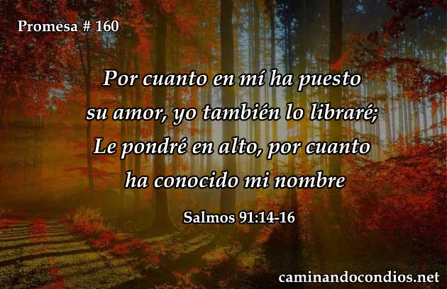 salmos 91:14-16