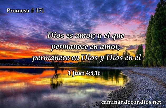 1 juan 4:8,16