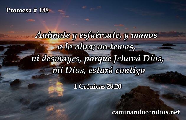 1 crónicas 28:20