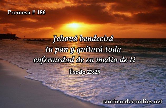 Exodo 23:25