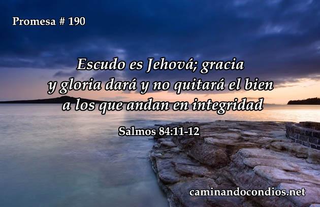 promesa-190