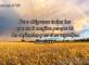 Salmos 5:11
