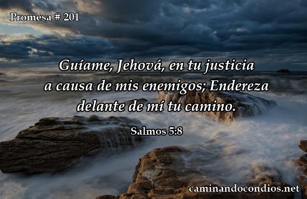 salmos 5:8