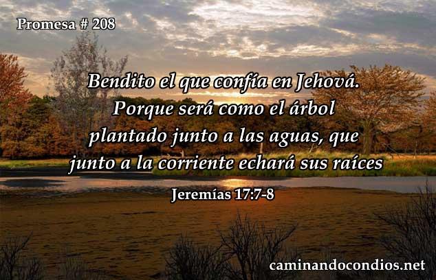 Jeremías 17:7-8