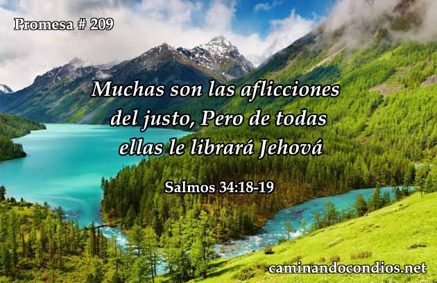 salmos 34:18-19