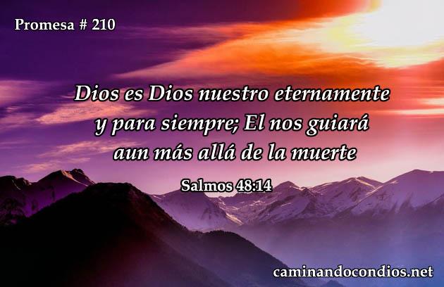 Salmos 48:14