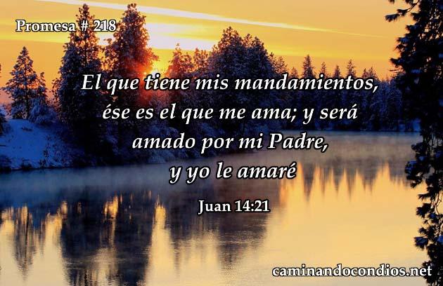 Juan 14:21