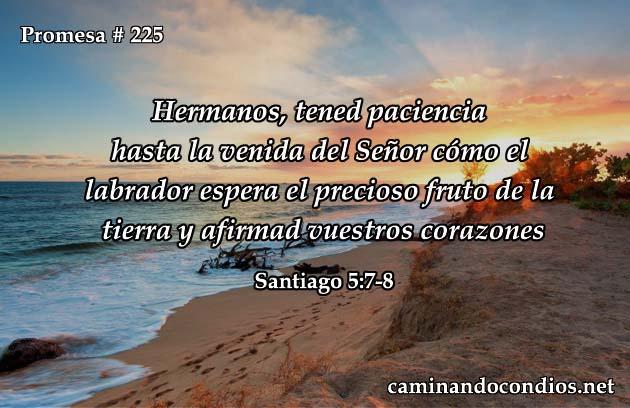 Santiago 5:7-8