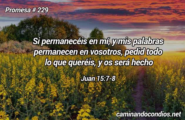 Juan 15:7-8