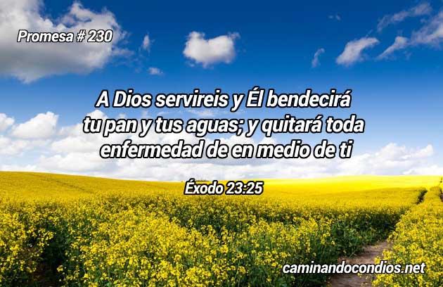 Éxodo 23:25