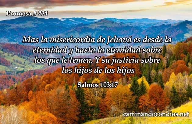 Promesa 234 Misericordia Para La Eternidad