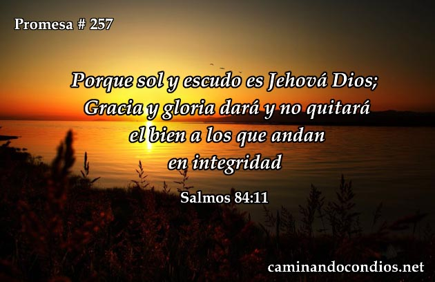 Salmos 84:11