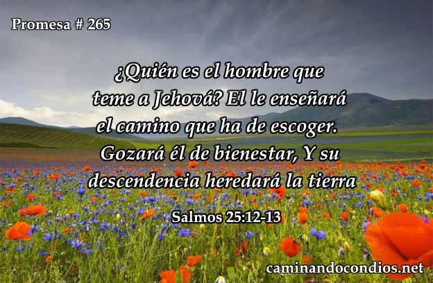 Salmos 25:12-13