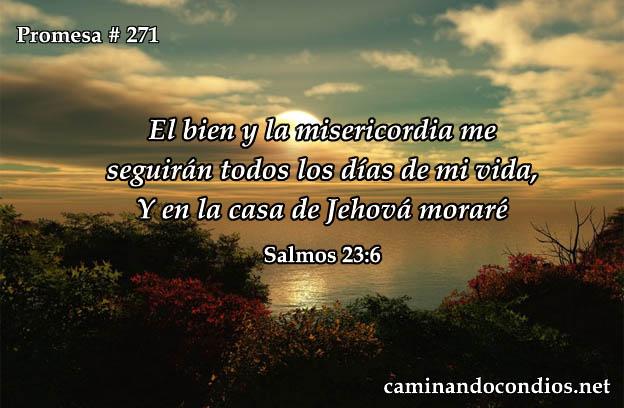 Salmos 23:6