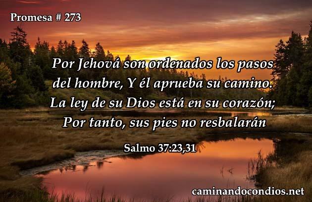 Salmos 37:23,31