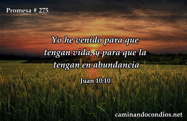 Juan 10:10