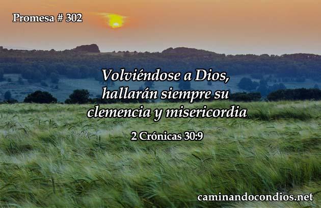 promesa-302