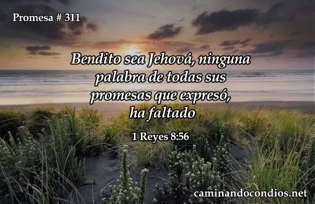 1 Reyes 58:6