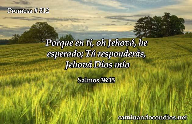 Salmos 38:15