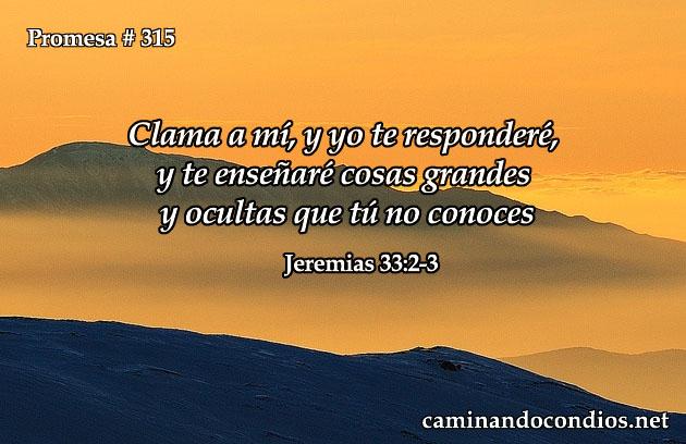 promesa-315