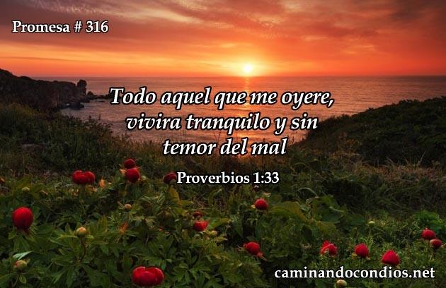 Promesa 1:33