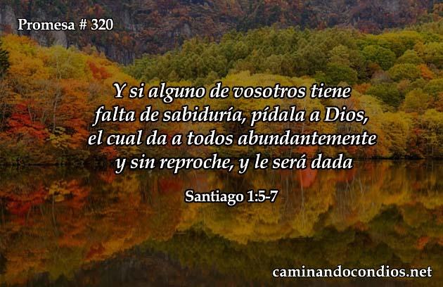 Santiago 1:5-7
