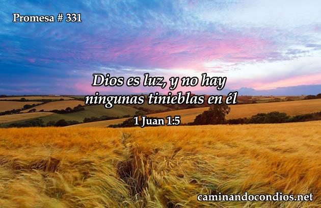 1 Juan 1:5