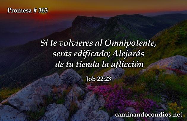 job 22:23