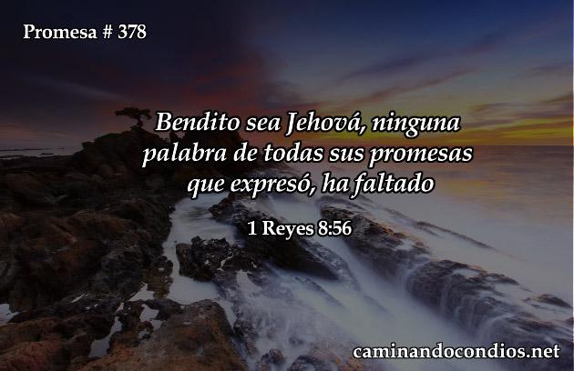promesa-378